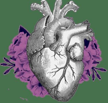 corazon_su_cuerpo
